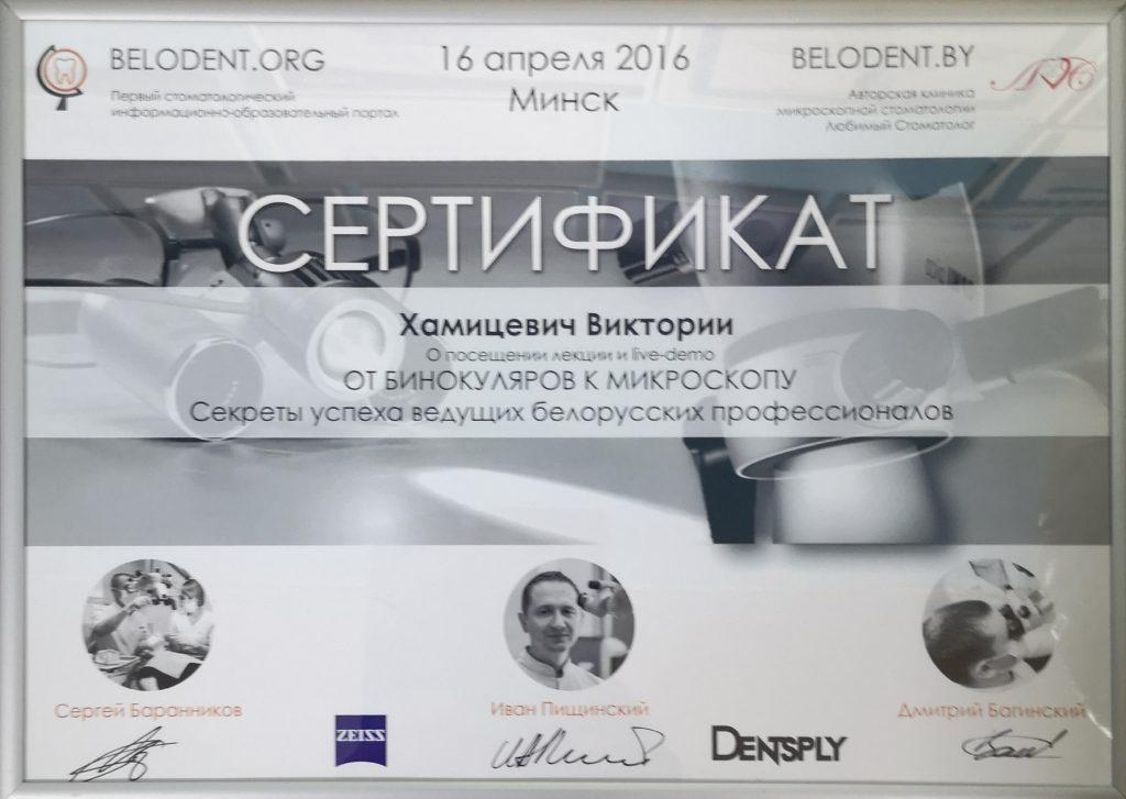 От бинокуляров к микроскопу, г. Минск 2016 г.